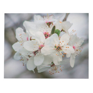Cherry Sakura Blossom Notepads
