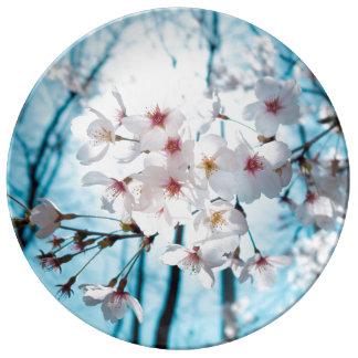 Cherry Sakura Blossom Porcelain Plate