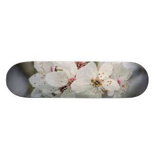 Cherry Sakura Blossom Skateboard Deck