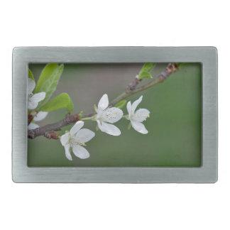 Cherry tree flowers belt buckles