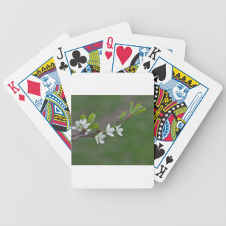 Cherry tree flowers bicycle playing cards