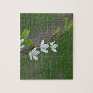 Cherry tree flowers jigsaw puzzle