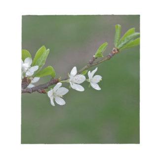 Cherry tree flowers notepad