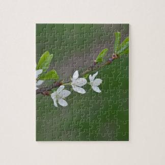 Cherry tree flowers puzzle