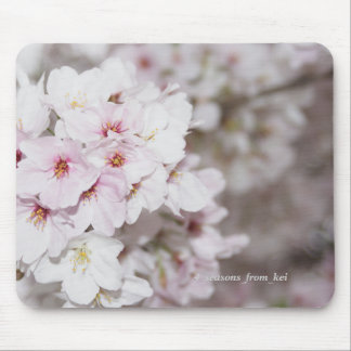 Cherry tree full bloom mouse pad