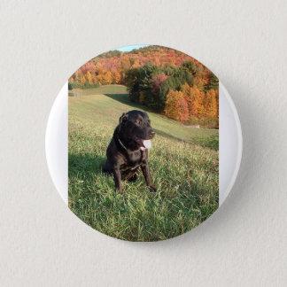 Chert Dog 2 Inch Round Button