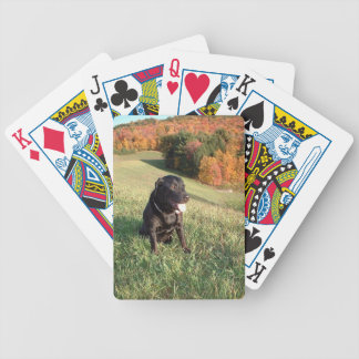 Chert Dog Bicycle Playing Cards