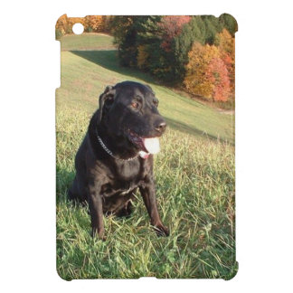 Chert Dog iPad Mini Case