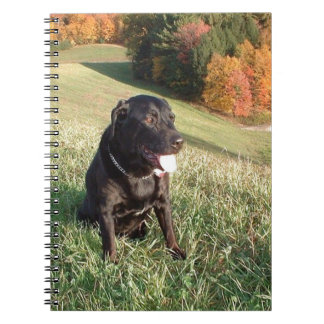Chert Dog Spiral Notebook