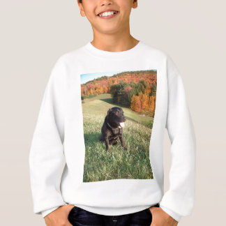 Chert Dog Sweatshirt