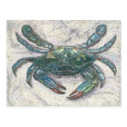 Chesapeake Bay Blue Crab Postcard