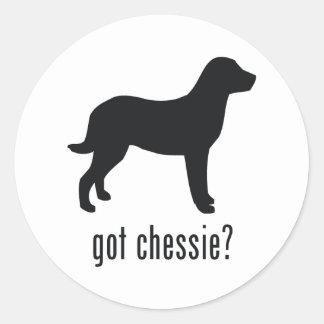 Chesapeake Bay Retriever Classic Round Sticker