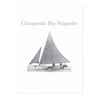 Chesapeake Bay Skipjacks Postcard