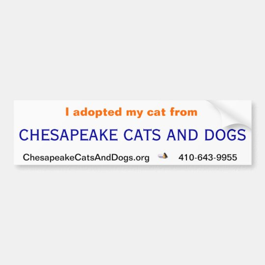 Chesapeake Cats and Dogs Bumper Sticker