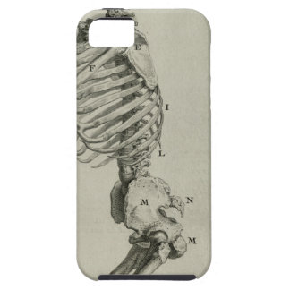 cheseldenprayingskeleton case for the iPhone 5