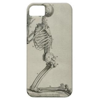cheseldenprayingskeleton iPhone 5 cover