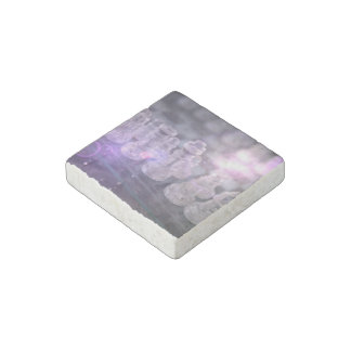 Chess Master Stone Magnets