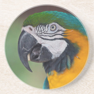 Chester II Beverage Coaster