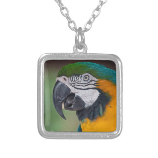 Chester II Silver Plated Necklace