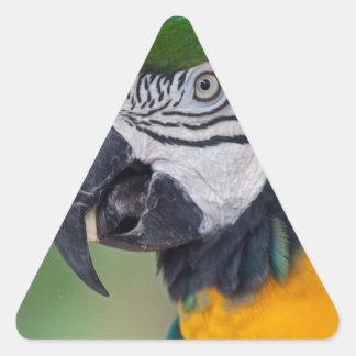 Chester II Triangle Sticker