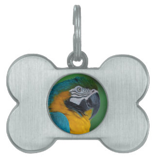 Chester III Pet Tags