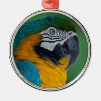 Chester III Silver-Colored Round Ornament