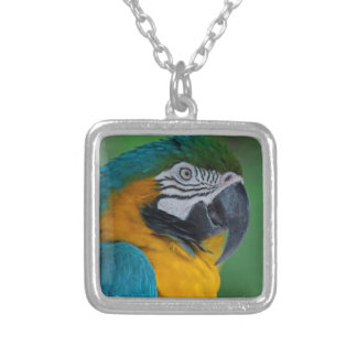 Chester III Silver Plated Necklace