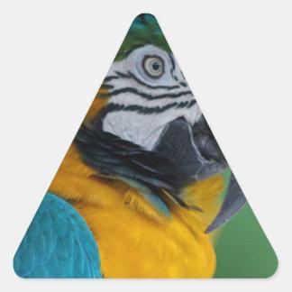 Chester III Triangle Sticker