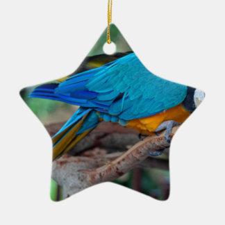 Chester IV Ceramic Star Ornament