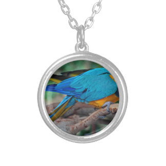 Chester IV Silver Plated Necklace
