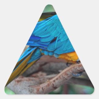 Chester IV Triangle Sticker