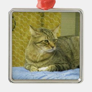 Chester Silver-Colored Square Ornament