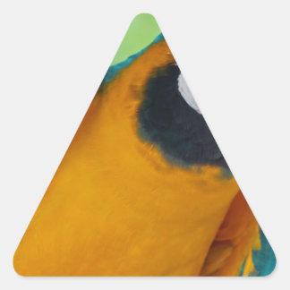 Chester Triangle Sticker