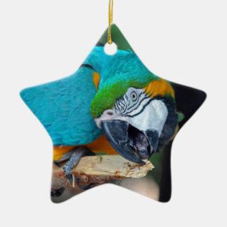Chester V Ceramic Star Ornament