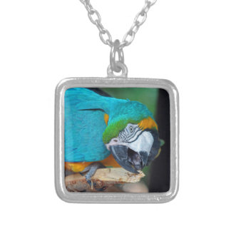 Chester V Silver Plated Necklace