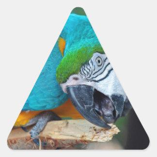 Chester V Triangle Sticker