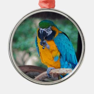 Chester VI Silver-Colored Round Ornament
