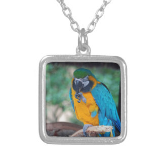 Chester VI Silver Plated Necklace