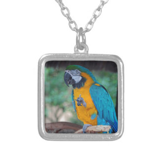 Chester VII Silver Plated Necklace