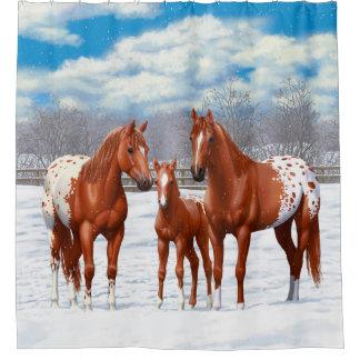 Chestnut Appaloosa Horses In Snow