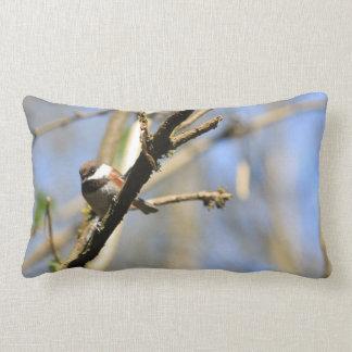 Chestnut Backed Chickadee Lumbar Pillow
