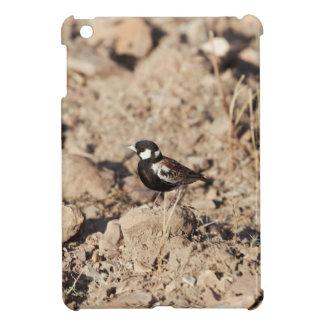Chestnut backed sparrowlark (Eremopterix leucotis) Case For The iPad Mini