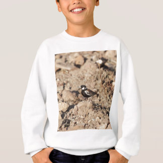 Chestnut backed sparrowlark (Eremopterix leucotis) Sweatshirt