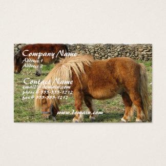 Chestnut Horse Business Card