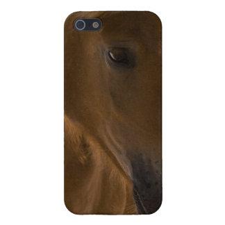 Chestnut Horse Design iPhone 5 Cases