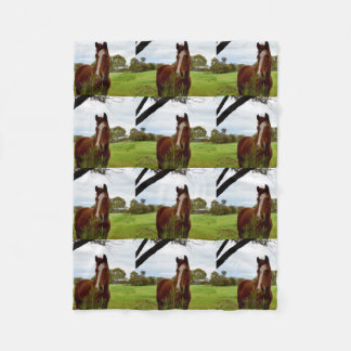 Chestnut Horse Sniffing A Banksia Tree, Small Fleece Blanket