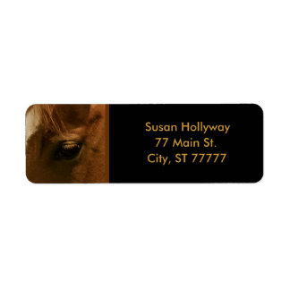 Chestnut Horse Soulful Eye Return Address Label