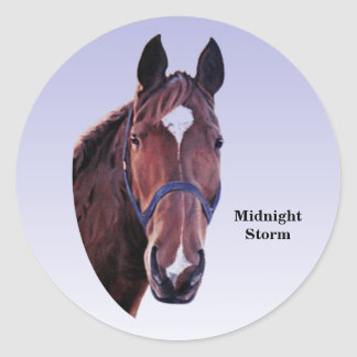 Chestnut Horse with White Star Round Sticker