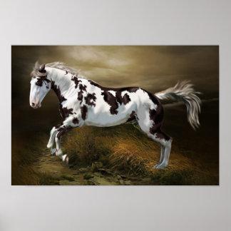 Chestnut Splash Frame Tovero Paint Horse Poster