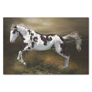 Chestnut Splash Frame Tovero Paint Horse Tissue Paper